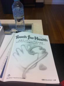 日本タッチフォーヘルスキネシオロジー協会画像