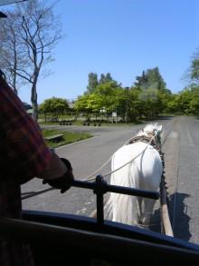 北海道で、竹馬とブレインジム画像4